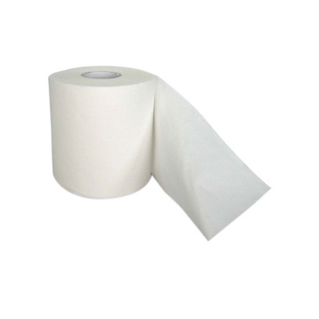 Picture of Toilet Paper - 1 Ply- Econo - 24 Rolls  [PP_42]
