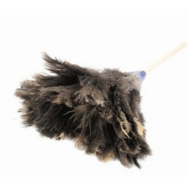Picture of Feather Duster - Genuine Ostrich Feathers - Small Head - 45cm - (5 Pack) - F9000