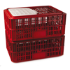 Picture of Live Chicken Crate with Lid - Plastic Bird Coop - Vented - 74 x 53 x 31 cm - Virgin Material - HACCP - PI-LB10-w_Lid-virgin
