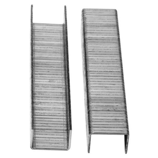 Picture of Staples for Staple Gun - Box of 1000 - 10mm x 6mm - TOOS1841
