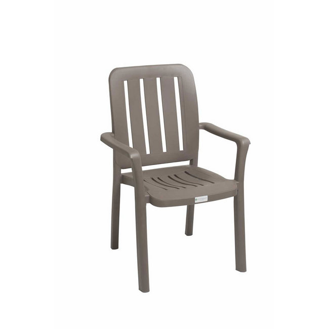 Picture of Plastic High Back Chair - Olivia - Colour Options - CH-OLHB